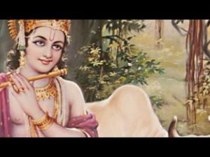 Read more about the article ओम् नमो भगवते Om Namo Bhagavate